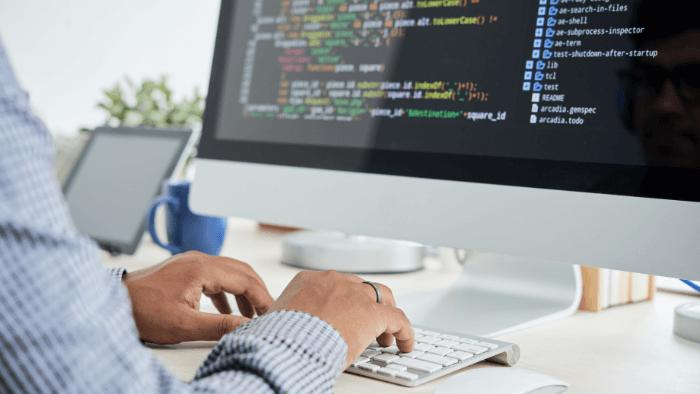 Custom software developer